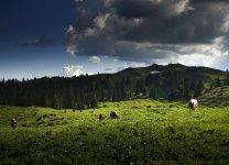 Mont-Tendre.jpg