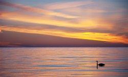 Sunset_14.jpg
