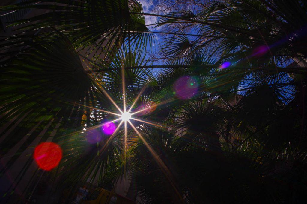 reflet Pergear 12mm f2